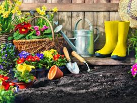 an artfully arranged collection of gardening gear and flowers