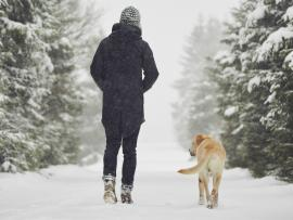 person walking in snow with a dog